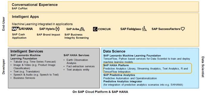 SAP Analytix | SAP Analytics Thinking (Data Warehousing / Business